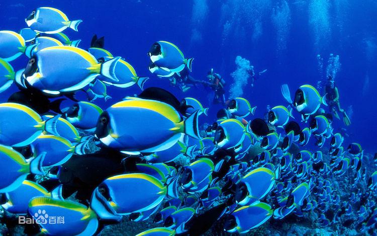 蓬莱海底世界一日游